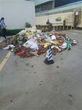 鹤山市商会中心后面垃圾堆积如山,臭气冲天,招蚊野蚁,