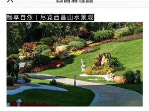 碧桂园给您一个五星级的家
