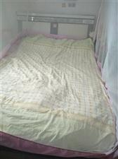 1.5米床(含床垫)