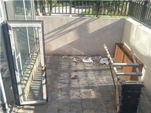 开莱,1层带小院,带阳光房,