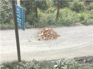 澳门新葡京官网县最灰最烂的一条路