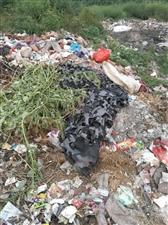 王吕村北,市庄村南大影背那的垃圾怎么没人清理