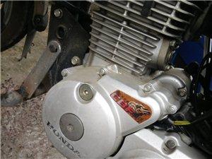 新大洲本田战龙150摩托车
