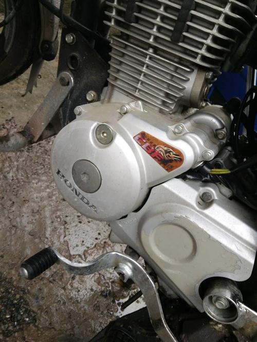 新大洲本田戰龍150摩托車