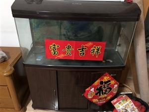 森森鱼缸,一米??四十,高一米二