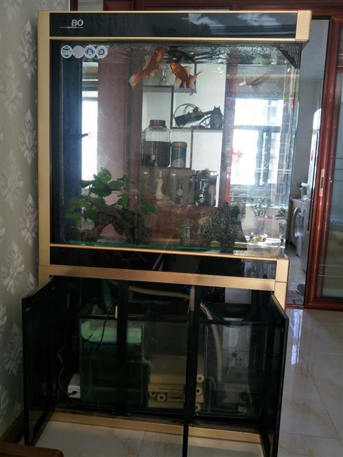 一米超白玻璃隔斷魚缸。聯系電話15035361441