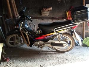 出售一辆本田摩托车非常省油,没怎么开过想要的联系15890388707