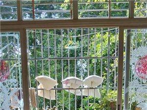 中山花园150平电梯房读一小凤城仅售175万元