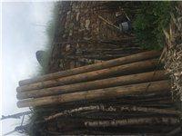 出售pe32給水管,300米, 樟子松防腐木立柱(圓柱),d=22cm,長4米,4根,柴油發電機兩...