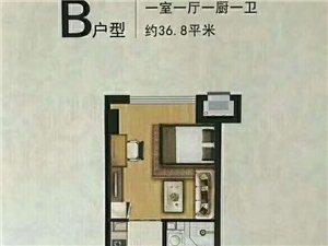 君和广场1室 1厅 1卫20万元