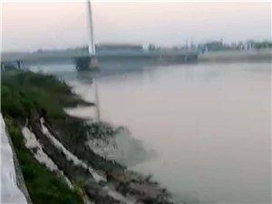 【已回复】污染水直排