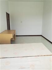 卢野村口小二楼1室 0厅 0卫300元/月