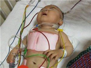 邓州的爱心人救救这个可怜的孩子吧
