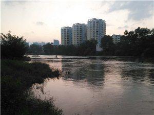 桃江河里电鱼的太猖狂了,请有关部门加强管理。