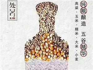 古井贡酒V9