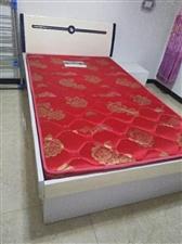 出售样品单人床一张,带床垫
