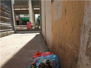 垃圾,一堆垃圾堆了一个星期了都没有人管。