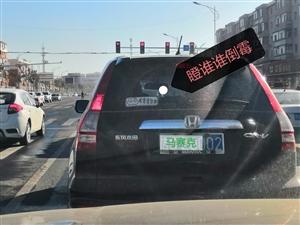 恶毒的车后标语