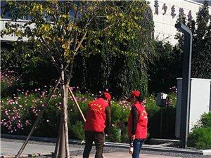 守护市民广场的多个团队辛苦了