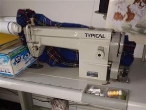 标准缝纫机580元13196336000