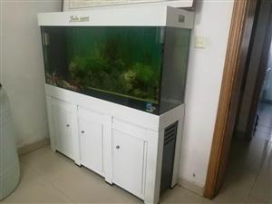 因腾出空间,现出售在用1.5米?? 缸一个,价格优惠,买鱼缸赠送?? 。
