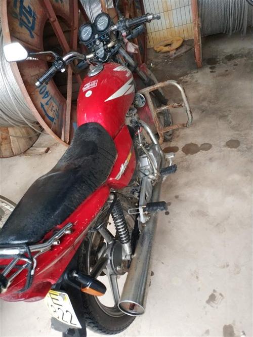 五羊125摩托车便宜处理,车况很好,无事故,真实图片,车子在和家庄镇,800元,有需要的朋友可以随时...