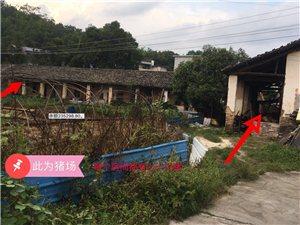 村里居民密集的住宅地居然有如此庞大的养殖场