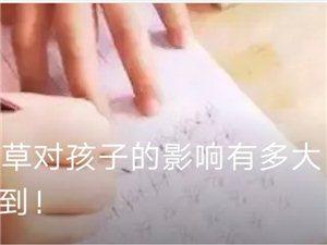 国庆节硬笔书法七天培训班