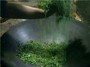 纯手工绿茶