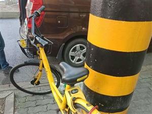 共享单车被别人上了锁