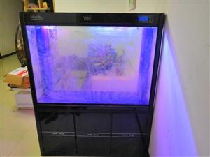 家有闲置精品龙鱼缸一个,附送充氧泵,加热棒,紫外线灯,细菌屋等等,低价转让,需上门自提,非诚勿扰!