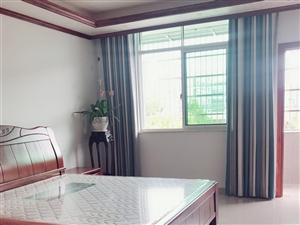 单身公寓出租650元/月,800元/月