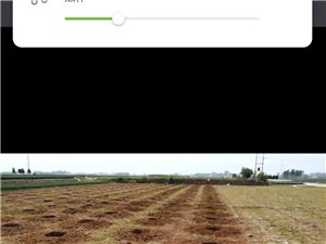 专业挖坑种树。。。15128275723