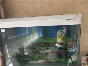 二手鱼缸白菜价出售,高1.5米,长1.2米,宽0.45米,价格面议。由于工作忙,鱼缸己闲置三年,故低...