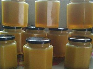 销售正宗纯天然蜂蜜