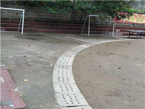 丰都党校操场成为遛狗场地,狗屎遍地。