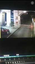 猖狂的偷车贼