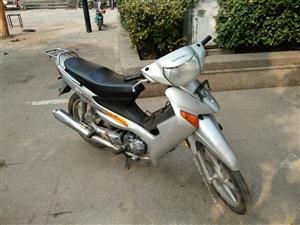 铃木弯梁摩托车出售原版原声800元。睢宁笑笑车行15262133328