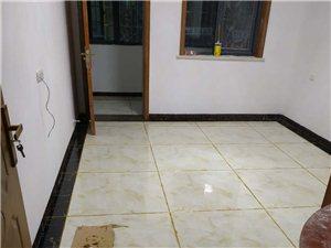 專業地板磚,瓷磚美縫