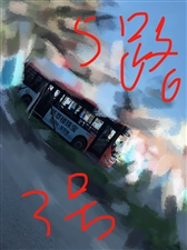 举报二水总站点5路3号3号3车司机欺负外地人不文明用语
