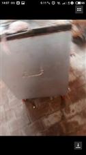 燃气烧饼炉,用了几天,有要的联系13563555914