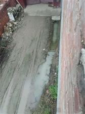 澳门龙虎斗网站市忻府区南城实验场刘银玉约在2010年侵占公伙出路,在农场规划的公共出路上建设南房、门洞,并把排