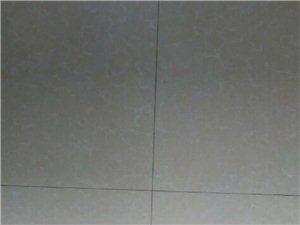 30年贴砖老师傅  可主体,瓷砖,砌墙,墙壁粉刷