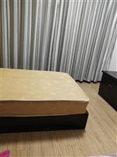 金滩建材市场1室 0厅 1卫900元/月