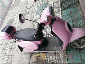 多台旧电动车 旧摩托车出售电话联系18979769540