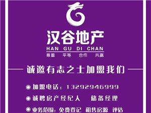 漢谷地產安國區域誠邀加盟商