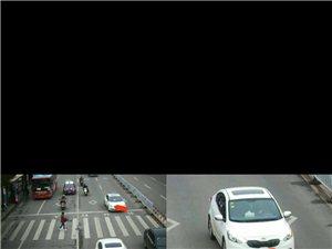 有那个交警能解释清楚这隔一条马路都要让行的规定