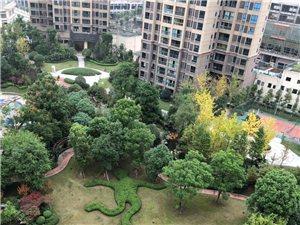 久桓城一期电梯房出售