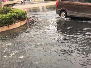 武汉东西门路面积水,臭气熏天