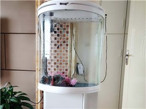 鱼缸八成新,才用了两个多月,想换掉在放鱼缸处放一颗树,诚心想要价格可商议,非诚勿扰